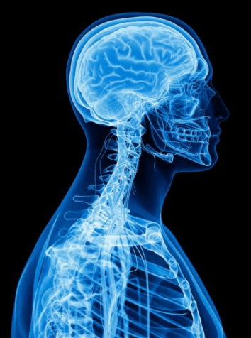 Calgary AB Upper Cervical Chiropractors